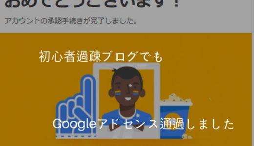 初心者過疎ブログでもGoogleアドセンス通過!押さえるべきポイントをまとめました。